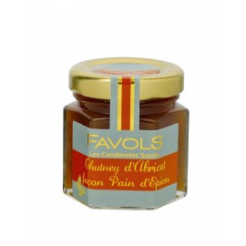 chutney de fruit abricot façon pain d'épices favols 50g